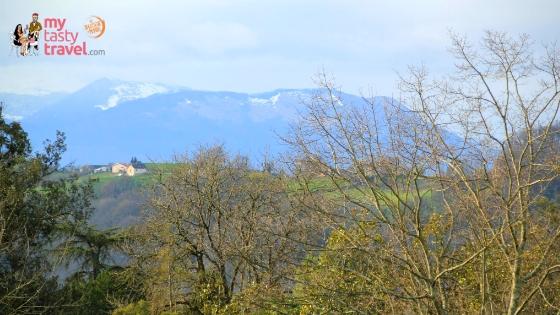 vue pyrenées Pau