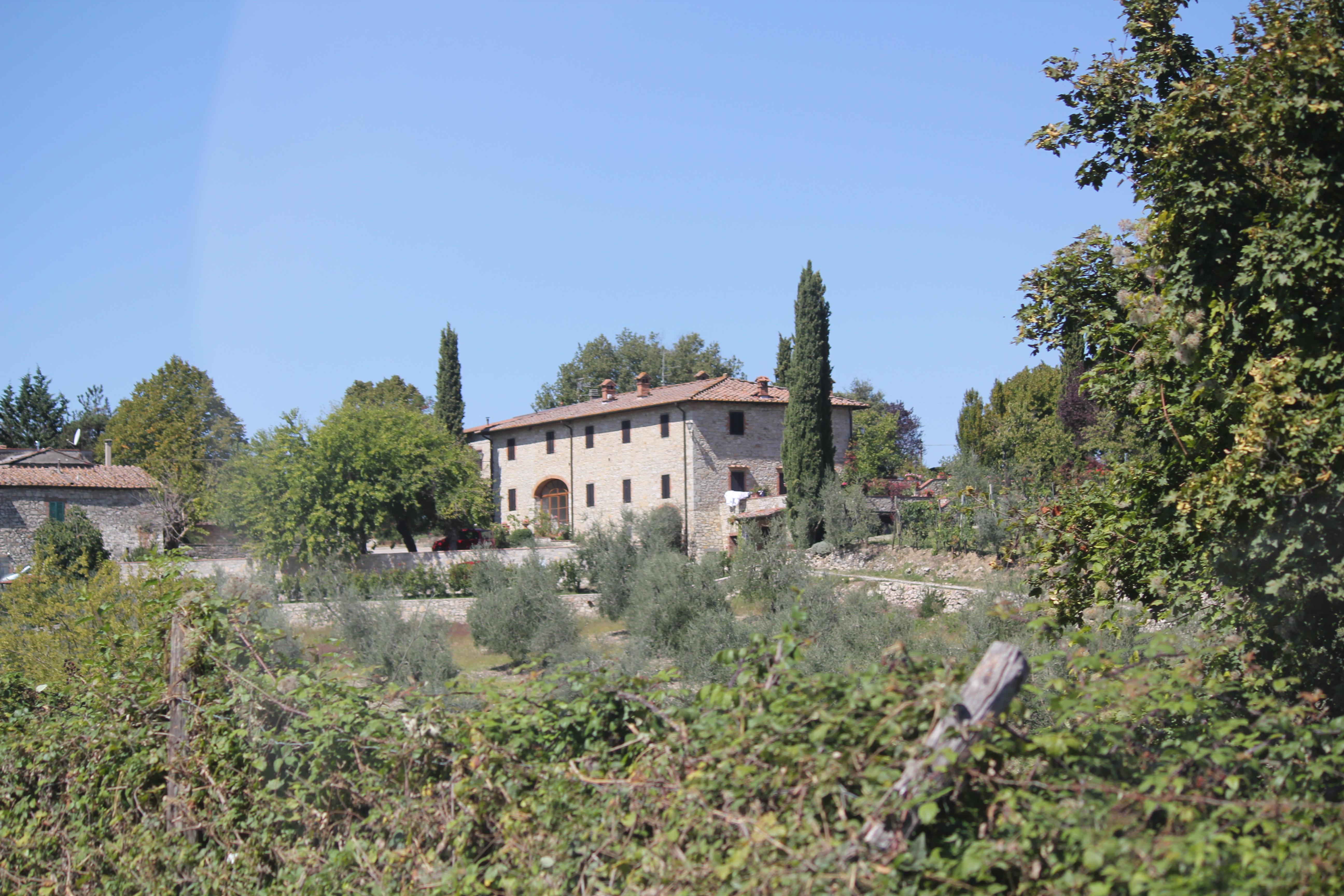 Vignoble Florence Italie