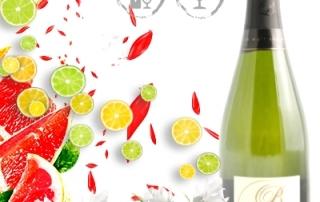 Champagne Briaux Lenique Les Semons