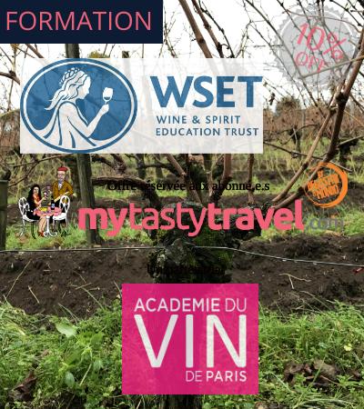 WSET: se formar em vinhos em Paris