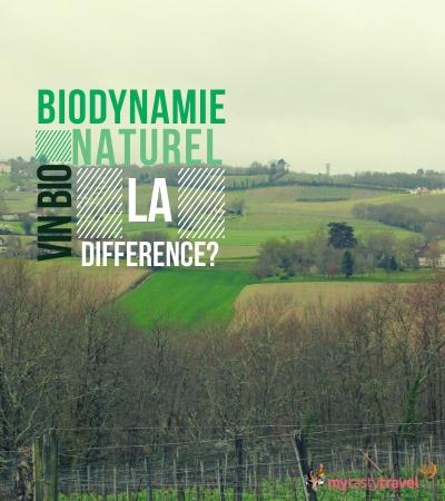 Un vin bio, biodynamie ou naturel, quelle est la différence ?